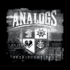 analogs-bezpieczny-1